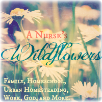 A Nurse's Wildflowers