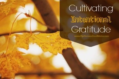 Cultivating Intentional Gratitude