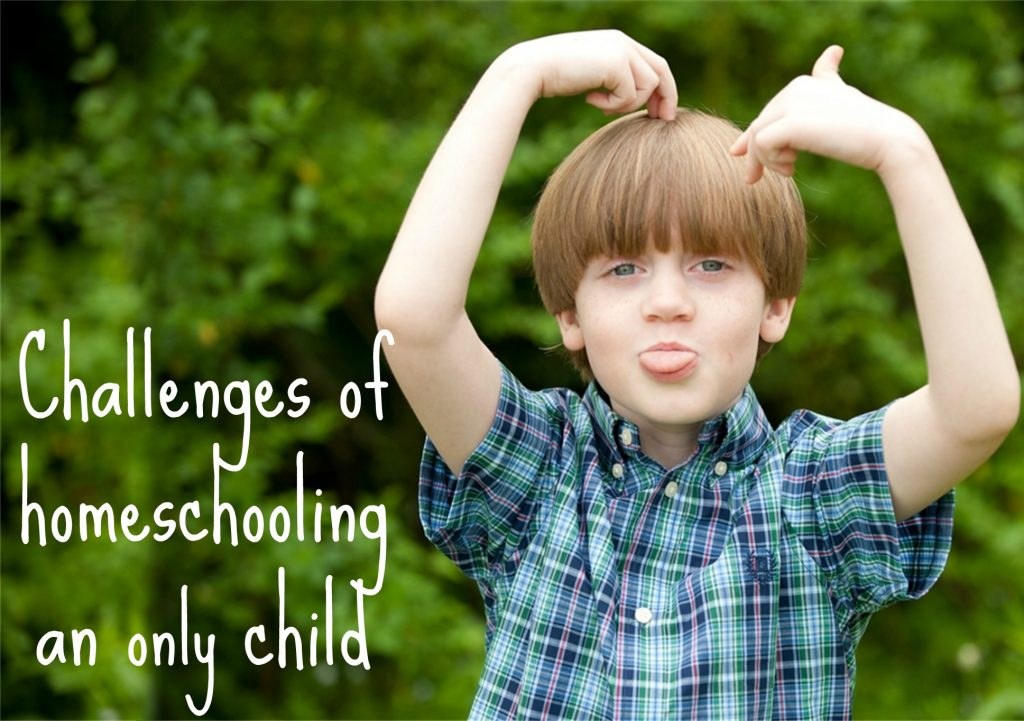 Challenges of Homeschooling An Only Child