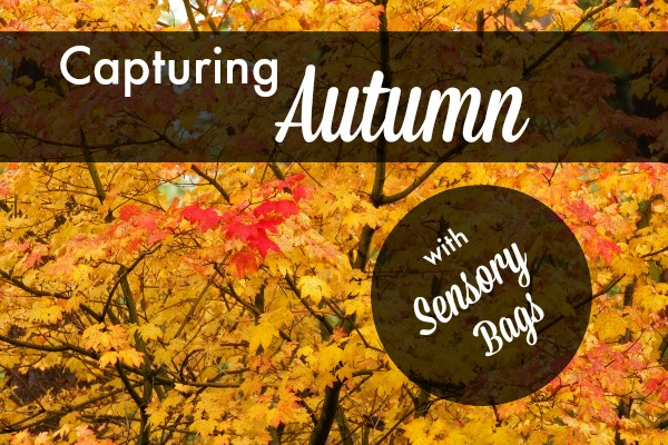 HHM Capturing Autumn Sensory Bags