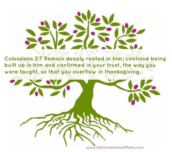 Colossians 2.7