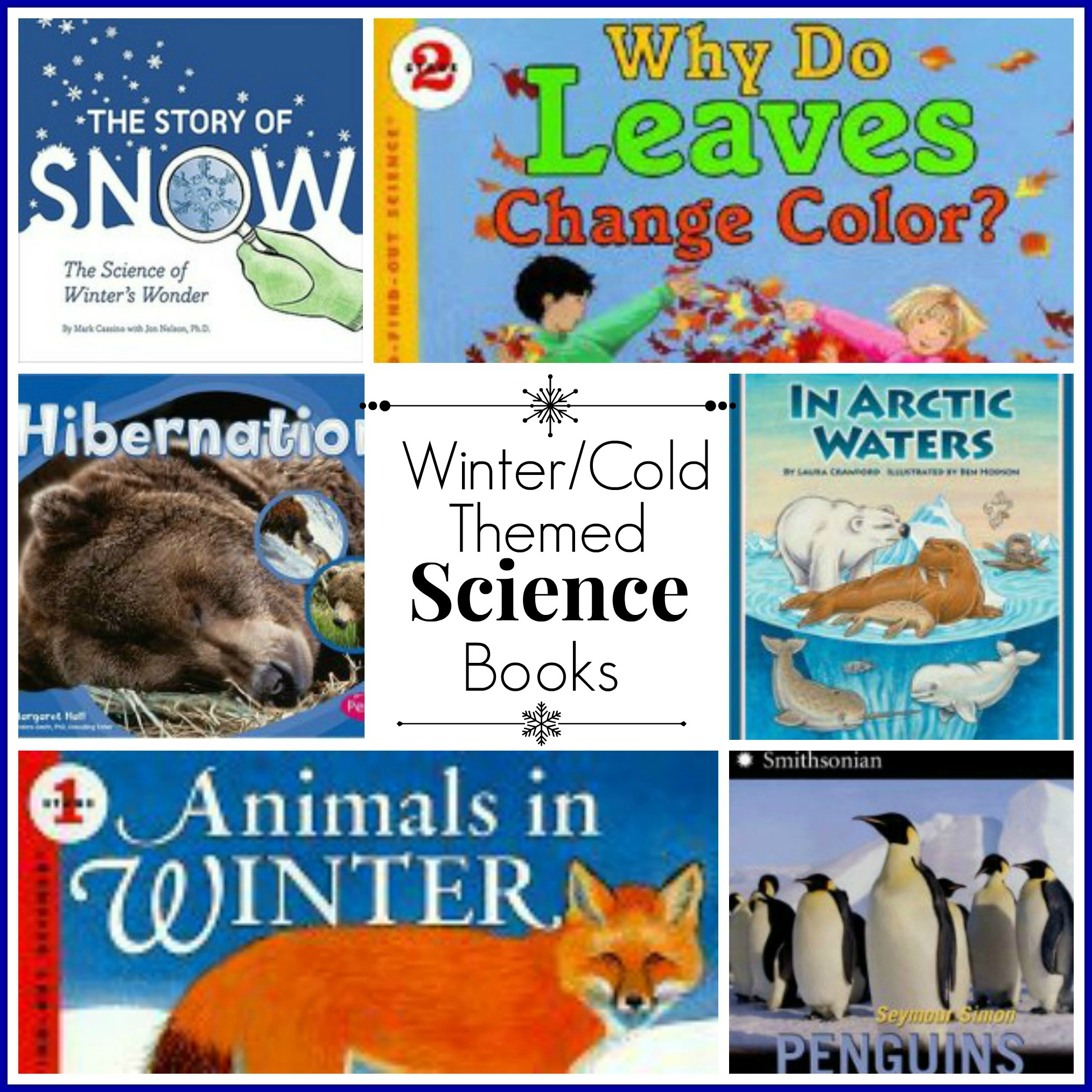 Winter/Cold Themed Science Books