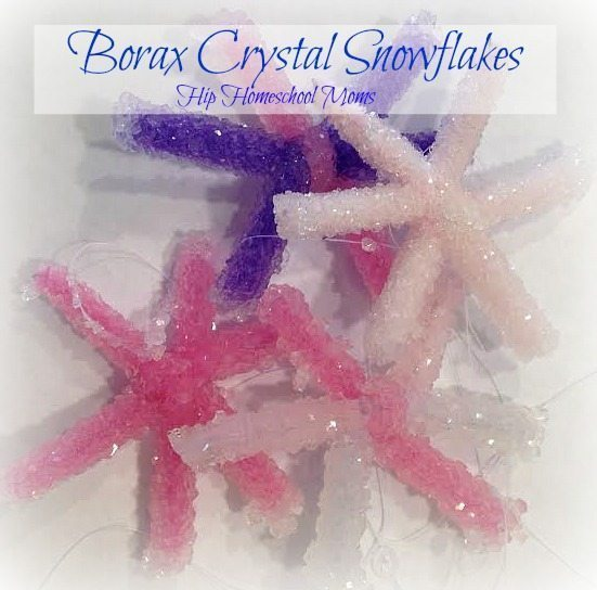 Christmas Science Experiment: Borax Crystal Snowflakes