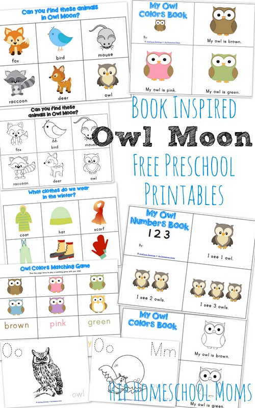 Owl Moon {Book-Inspired Preschool Printables} from Wildflower Ramblings