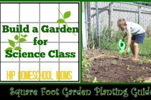 Build a Garden for Science Class