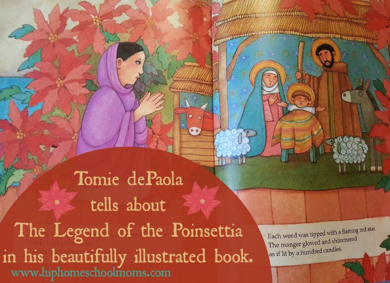 Inside the Legend of the Poinsettia . The post gives tutorial ona poinsettia art project to go with it. | Hip Homeschool Moms