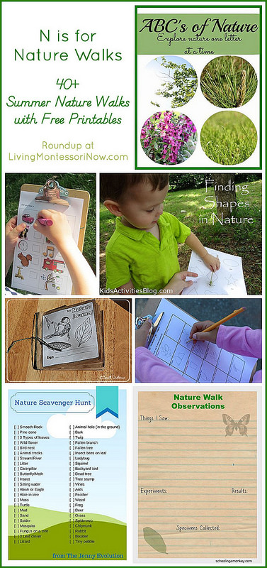 N-is-for-Nature-Walks-with-Free-Printables