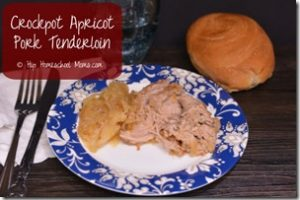 Crockpot Apricot Pork Tenderloin from Hip Homeschool Moms