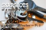 Snapshots of a Mother's Cancer Experience — A Tattered Black Feather Pt 2
