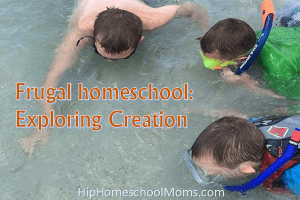 Frugal Homeschool: Exploring Creation