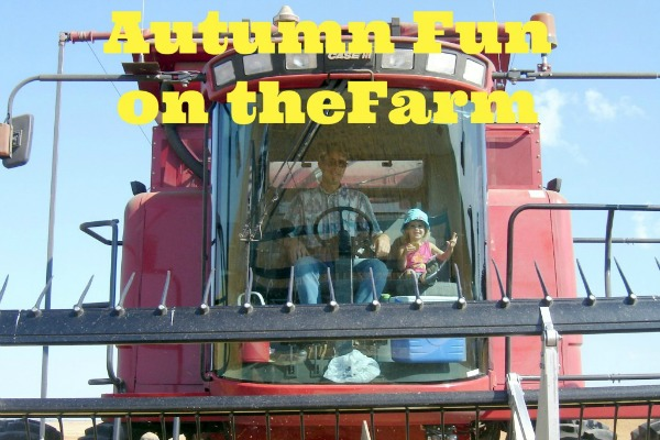 Autumn Fun on the Farm