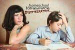 Homeschool Honeymoon Disintegration