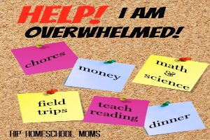 Help! I Am Overwhelmed!