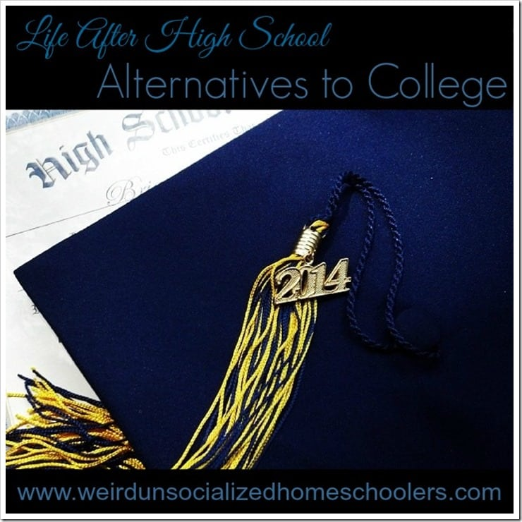 HHM Hop Alternatives to College