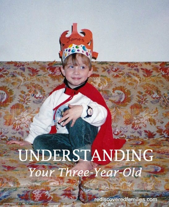HHM Hop Understanding Your Three-Year-Old