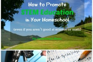 HHM How to Promote Stem Education in Your Homeschool Resized