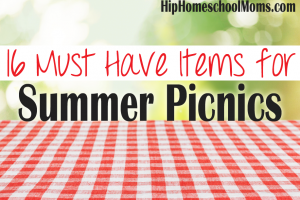 16 Must Have Items for Summer Picnics