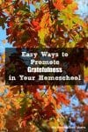 Easy Ways to Promote Gratefulness in Your Homeschool