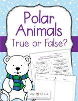 Polar-Animals-True-or-False
