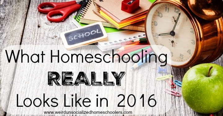 HHM What-Homeschooling-REALLY-Looks-Like-in-2016