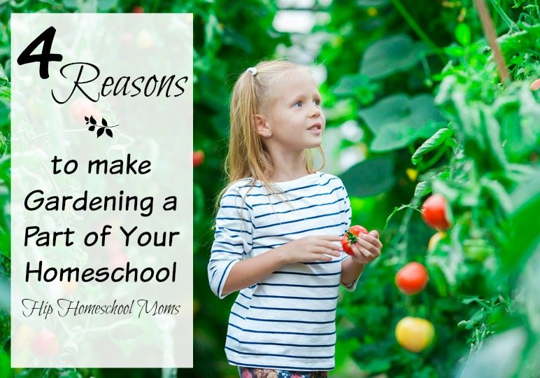 4 Reasons to Make Gardening a Part of Your Homeschool