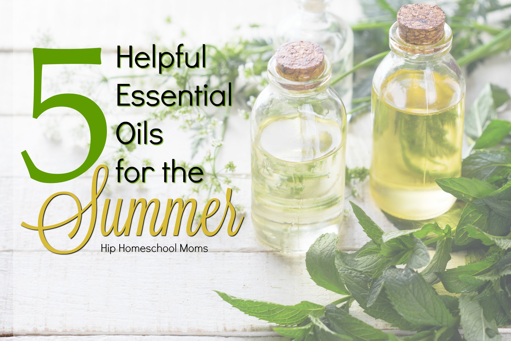 5 Helpful Essentials Oils for the Summer