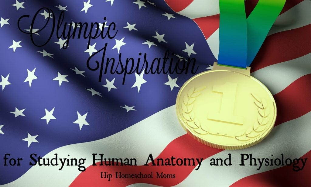 HHM Olympic Inspiration for Studying Human Anatomy and Physiology