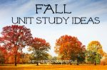 Easy Fall Unit Study for Homeschoolers