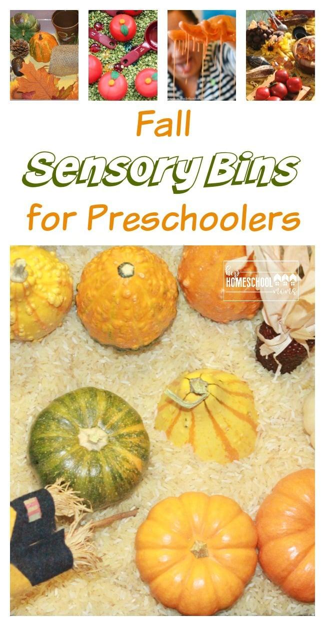 Fall Sensory Bins HHM
