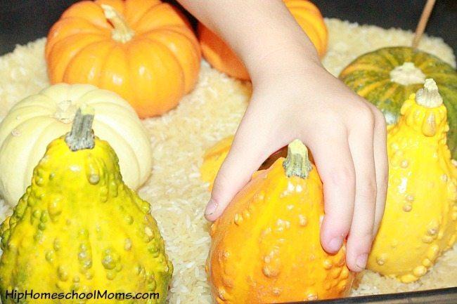 Fall Sensory Bins for Preschool