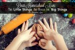 Dear Homeschool Mom: The Little Things Are Really the Big Things