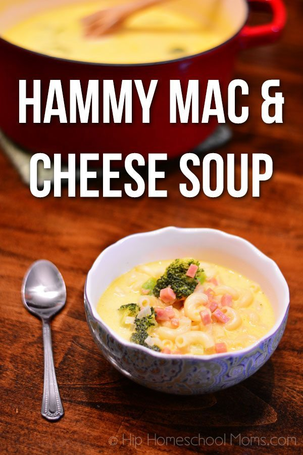 Hammy Mac & Cheese Soup from Hip Homeschool Moms