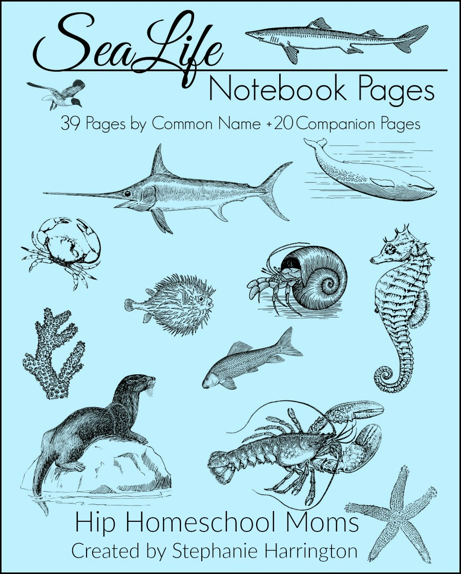 Sea Life Cover Page