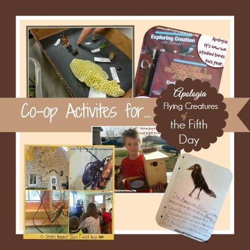 Flying Creatures of the Fifth Day Activities for your Co-op