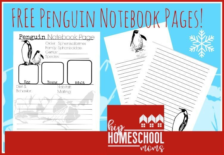 Free Notebook Pages for Penguin Study