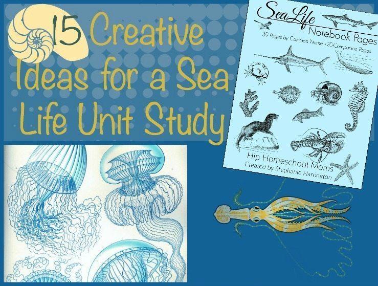 Sea Life Unit Study