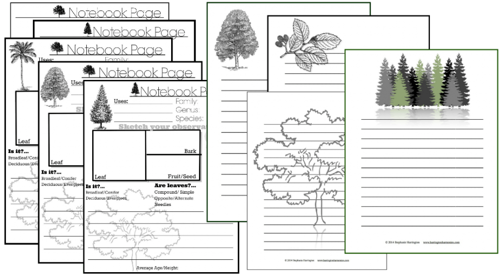 Tree Notebook Pages