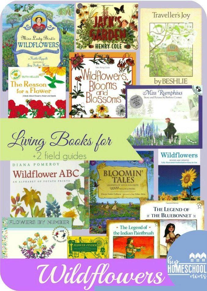 Wildflower Books for Wildflower Study