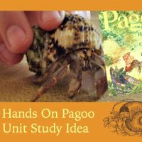 This is a fun and easy unit study on tide pools and sea life using the book Pagoo!