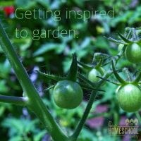 Getting Inspired to Garden
