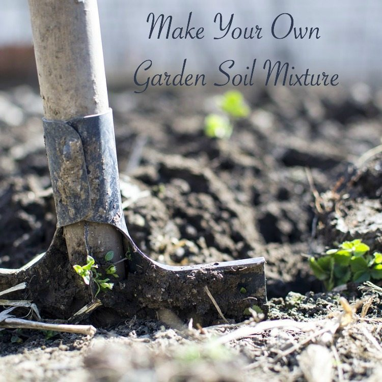 Make your own garden soil mixture hip homeschool moms - Plants that dont need soil natures wonders ...