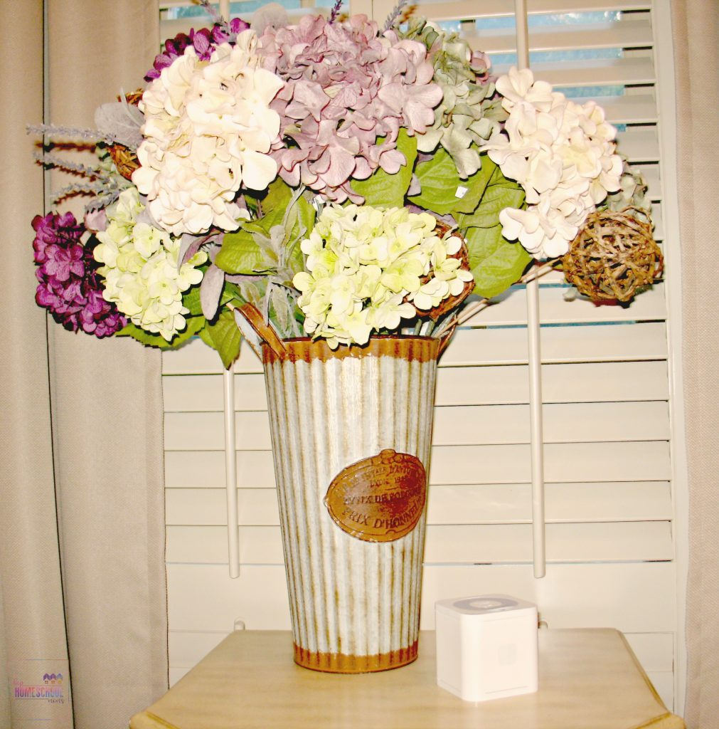 circle with disney on table with hydrangeas in the background