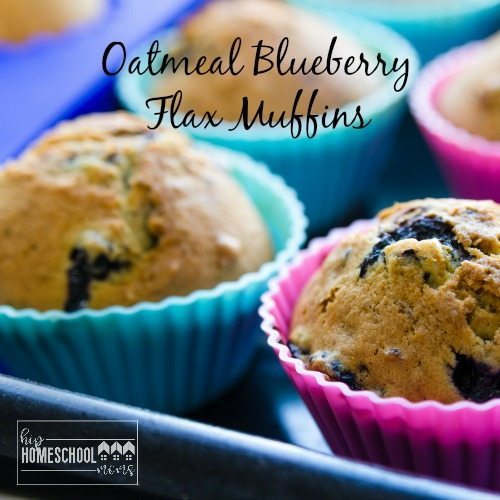 Oatmeal Blueberry Flax Muffins