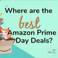 where are the best amazon prime day deals with a cat in the box