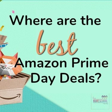 Where Are the BEST Amazon Prime Day Deals?