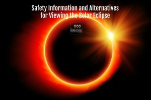 Safety and viewing information for the solar eclipse.